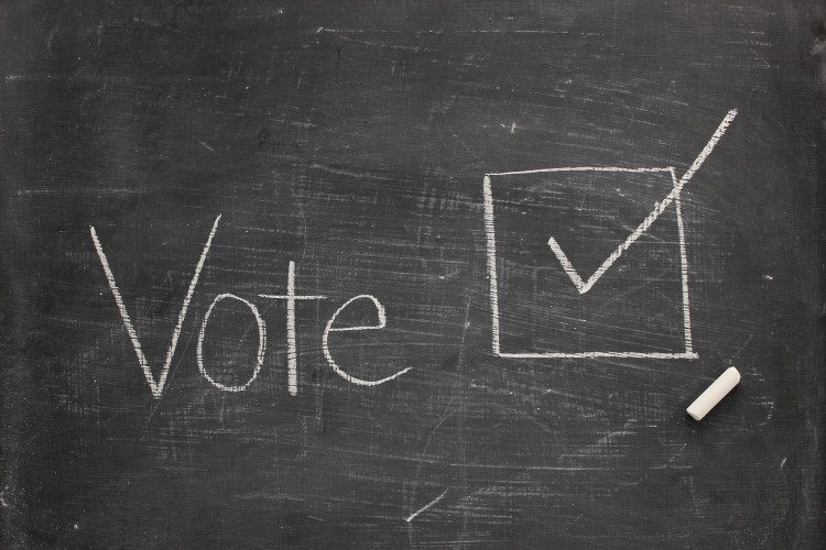 The word vote written on a chalk board next to a box with a check inside