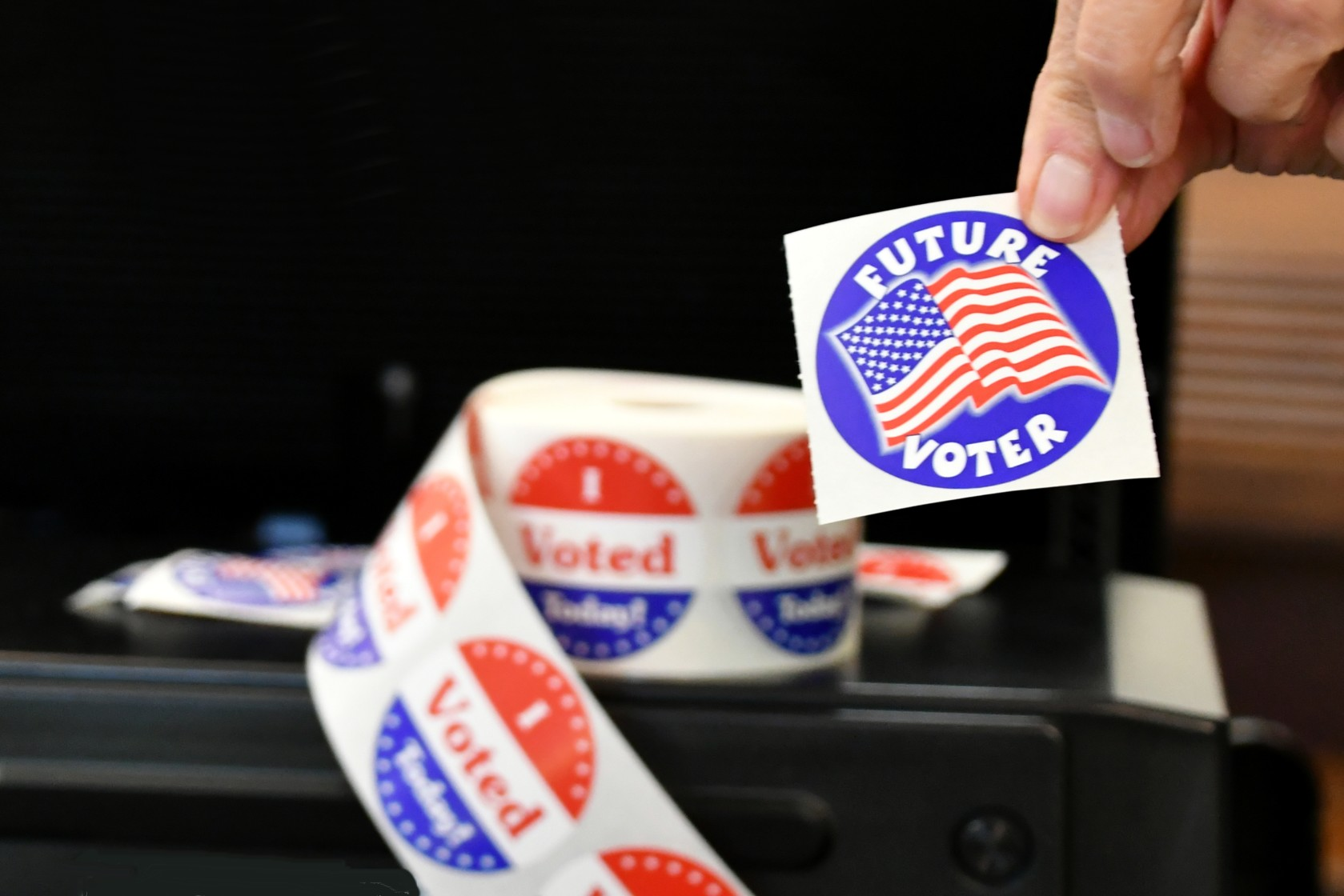 protecting the future of voting